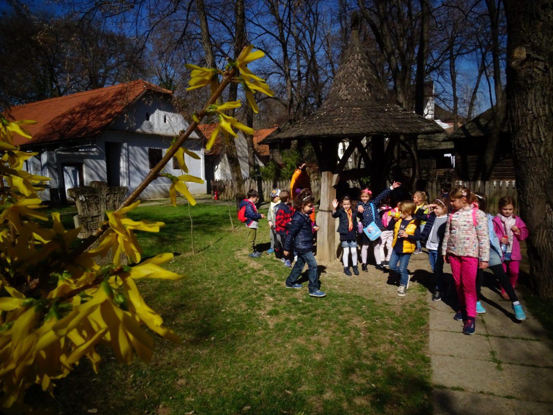 muzeul satului ltn