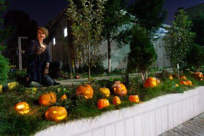 Halloween LTN
