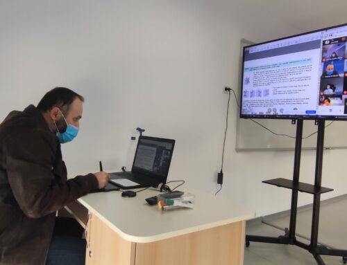 Reluarea cursurilor online la LTN